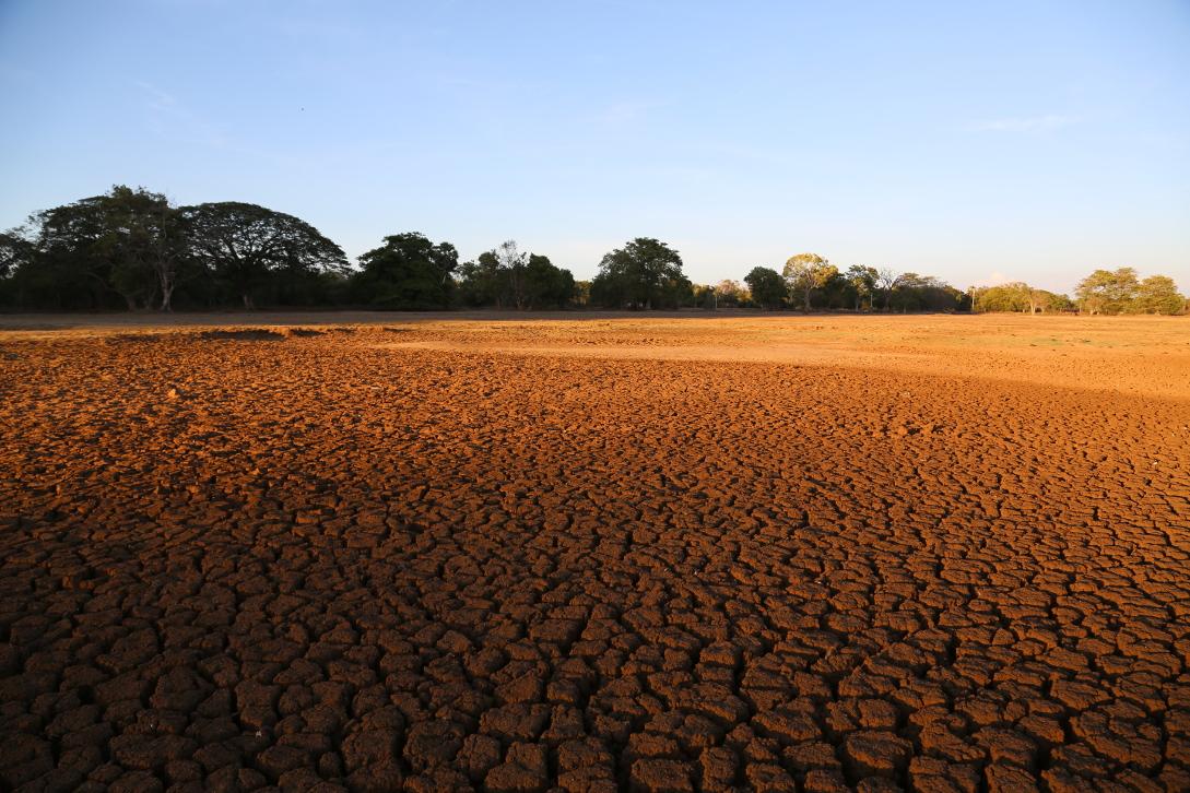 Ökosozialistische Revolution oder Klimakatastrophe